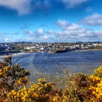 Cemaes From Coastal Path