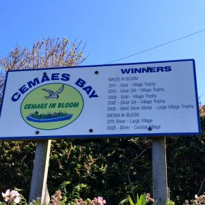 Cemaes in Bloom