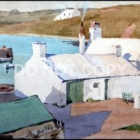 Cemaes Artist Painting