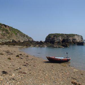 Dingy on Porth yr Ogof Beach